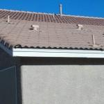 Las Vegas invisible solar pool heater